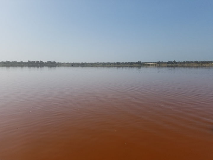 Orange waters of Lake Retba near the shore.