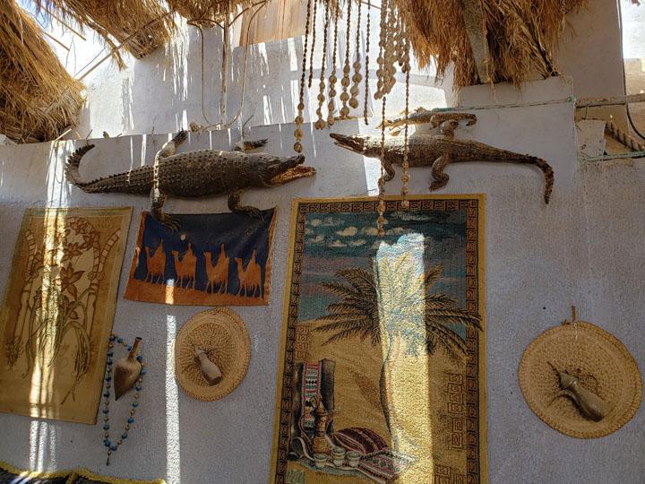 Crocodiles Displayed on a Wall of a Nubian Home
